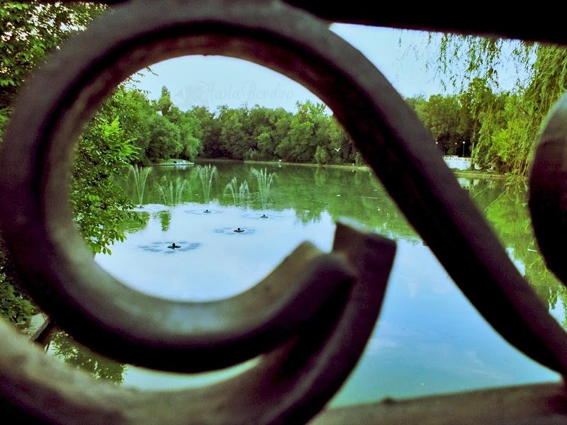 lac parcul national bucuresti