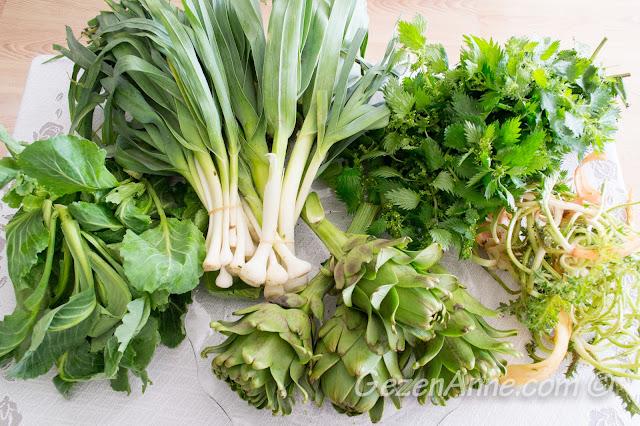 Ege yeşillikleri: sakız enginarları, şevketi bostan, körmen, cibes