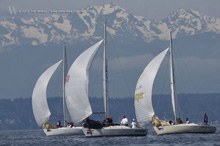 J/24 one-design sailboats- sailing off Seattle, WA