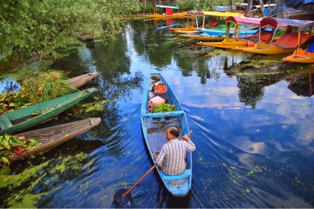 srinagar floating vegetable and flower market dal lake