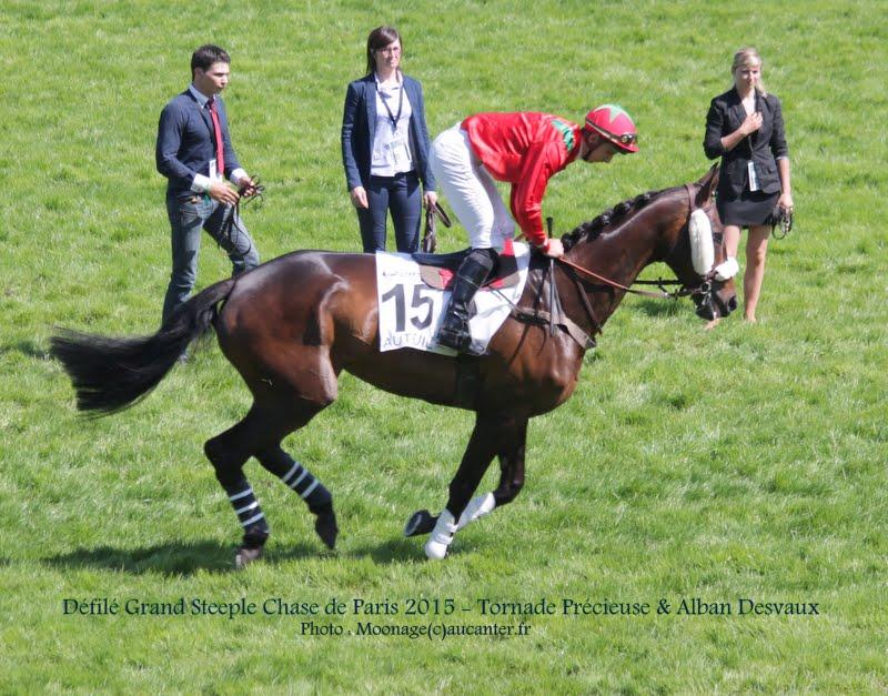 Photos Auteuil 17-05-2015 Journée du Grand Steeple IMG_0188