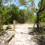 Int of GNW and Wondabyne trail (382595)