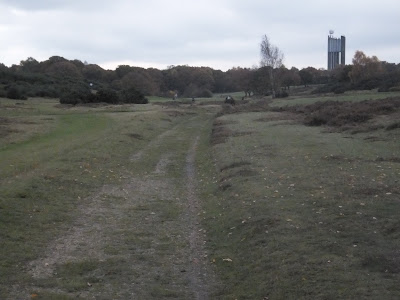 Rushmere Heath