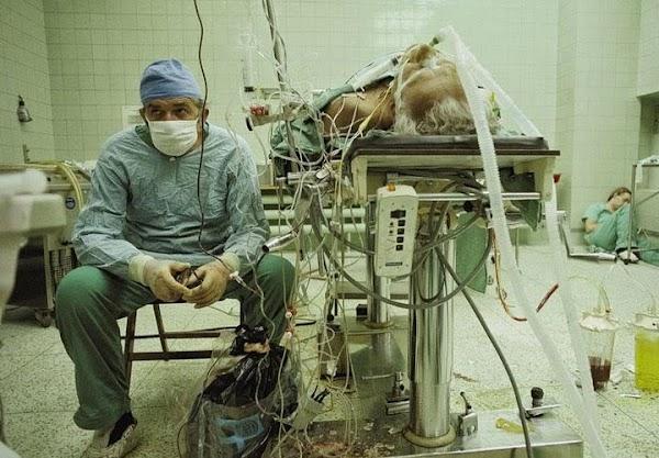Dr. Zbigniew Religa, Dupa Un Transplant