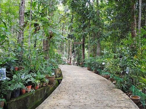Taman-Herba-Tasik-Kenyir-Herbs-Garden