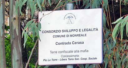 Von der Mafia konfisziertes Land