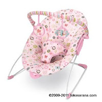 1 Bright Starts #: 6952 Pretty In Pink™ Butterfly Blossoms™ Cradling Bouncer