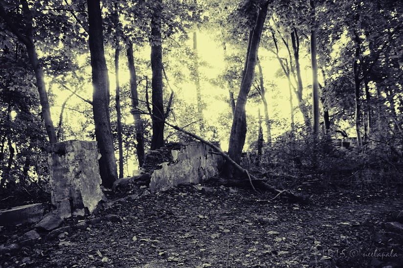 Ruins at Milford Mills, Marsh Creek State Park