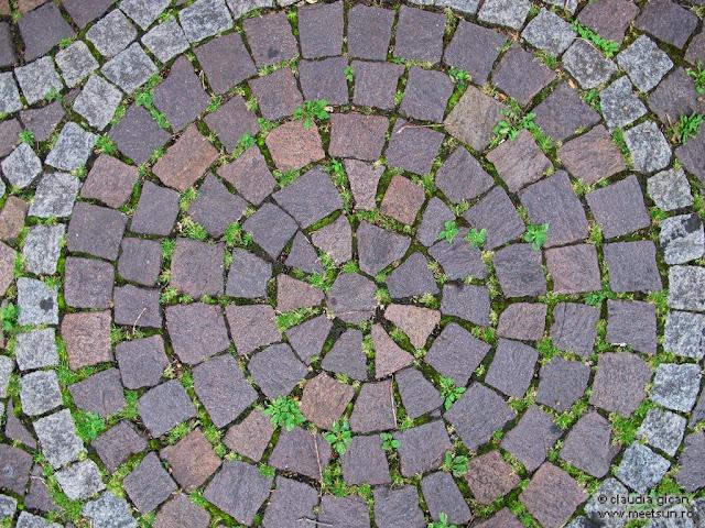 optimism. cercuri concentrice. viata versus inertie