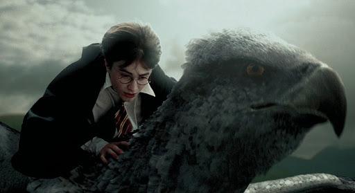Buckbeak Harry Potter