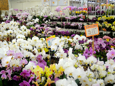 The Los Angeles Flower District is not open to the public except right before some holidays like Valentine's Day [Remember Valentine's Day the movie when ...