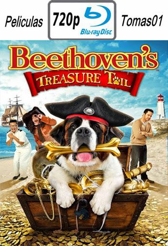 Beethoven y el Tesoro del Pirata (2014) BRRip 720p