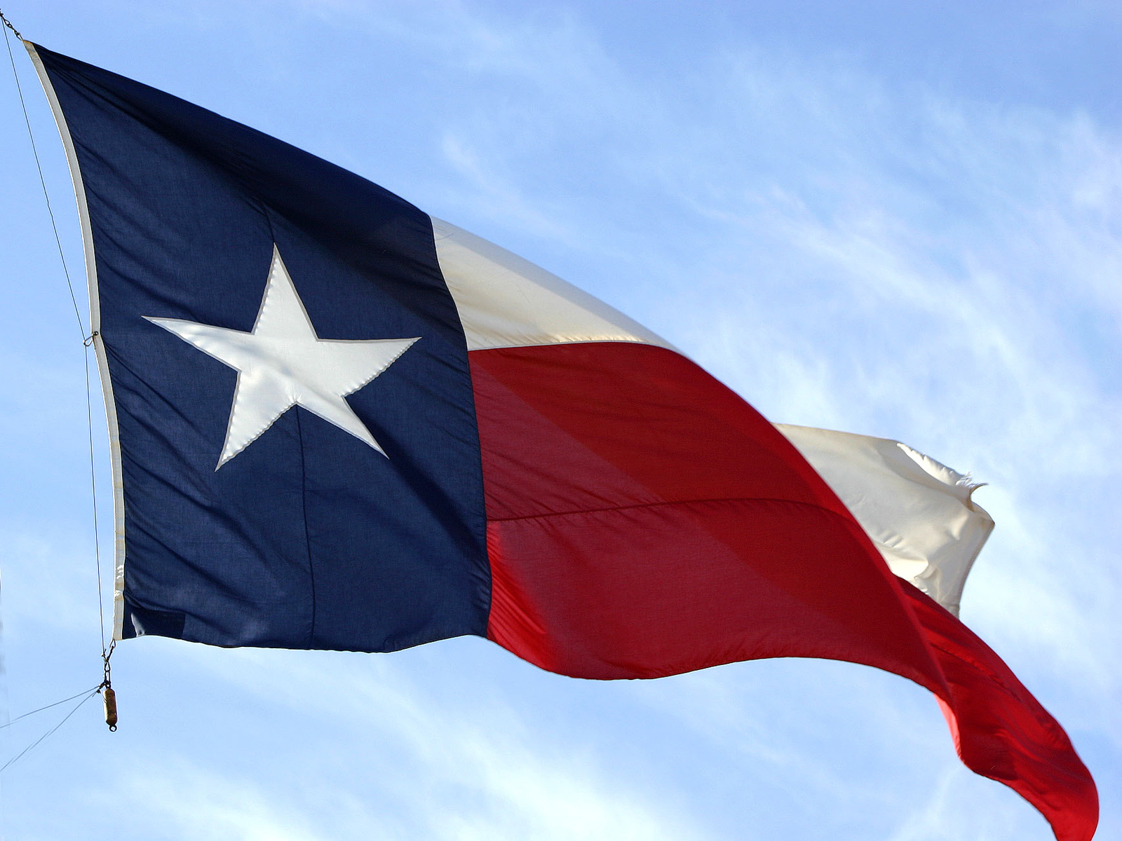 Dominican life on lotus lane some texas history from a catholic point of view - Texas flag wallpaper ...