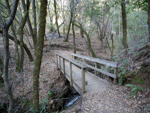 upper stevens creek