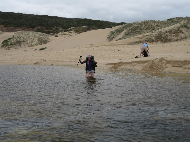 Crossing Willyabrup Brook, Cape to Cape Track