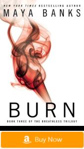 Breathless series - Burn - Erotic romance novels