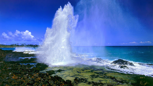 Spouting Horn Blowhole, Kauai, Hawaii.jpg