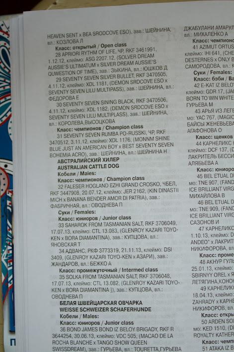 РОССИЯ - Страница 9 IMG_3074