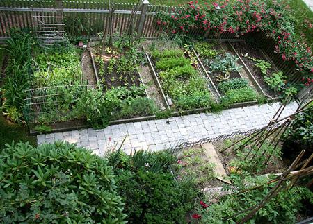 1 acondicionamiento de azoteas paisajes comestibles for Huerto en azotea