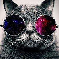 Kasia's avatar