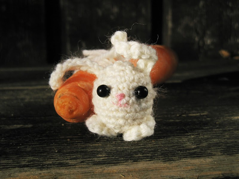 Amigurumi Bunny Free Crochet Pattern The Sun And The Turtle
