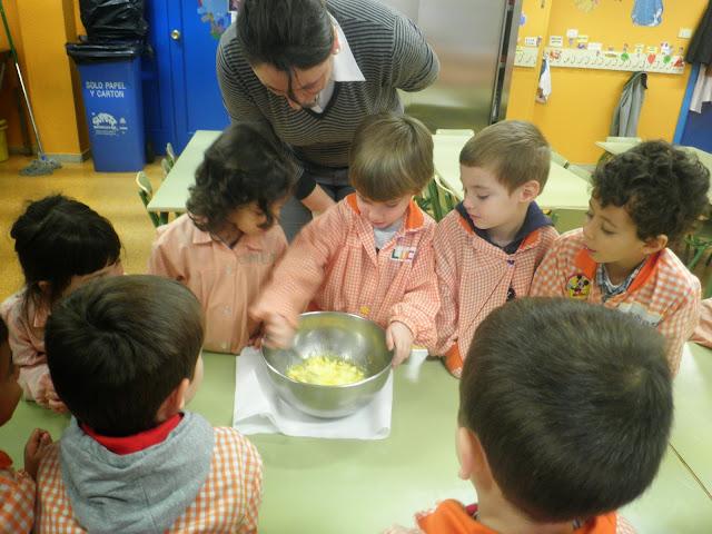 Koalas cocinando