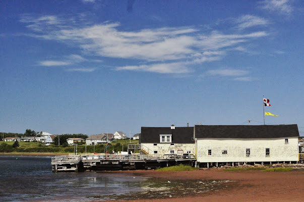Blue Mussel Cafe, 312 Harbourview Drive, North Rustico Harbour, PE C0A 1H0, Canada