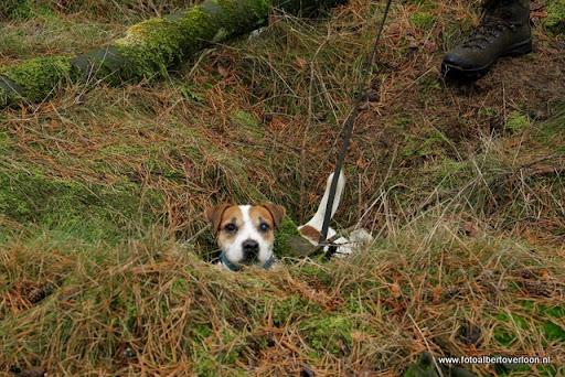 vossenjacht in de Bossen van overloon 18-02-2012 (56).JPG