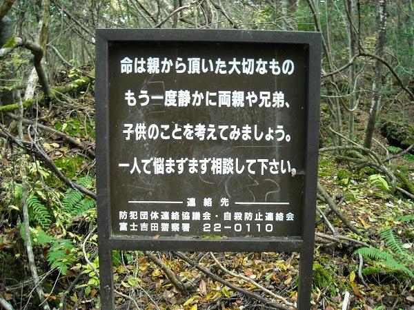 nơi hoàn hảo để chết - aokigahara