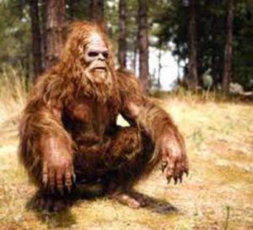 Bigfoot Skull Found