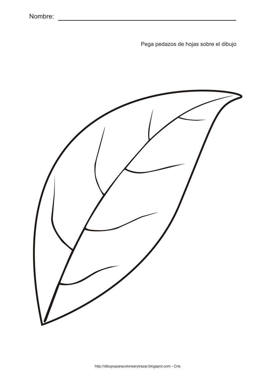 Actividades para estimulaci n temprana pega pedazos de - Plantas de hojas verdes ...