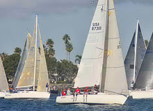 J/35 and J/109 enjoy palm tree sailing off San Diego, CA