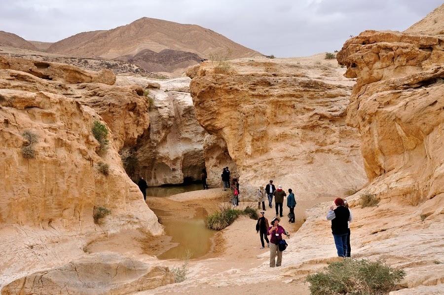 Наша группа любуется Эйн Йоркам. Экскурсия гида Светланы Фиалковой в пустыню Негев.