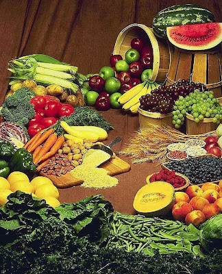makanan Sistem Pencernaan (1) : Jenis dan Fungsi Bahan Makanan dan Vitamin
