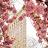 Leanne Ahmadi avatar image