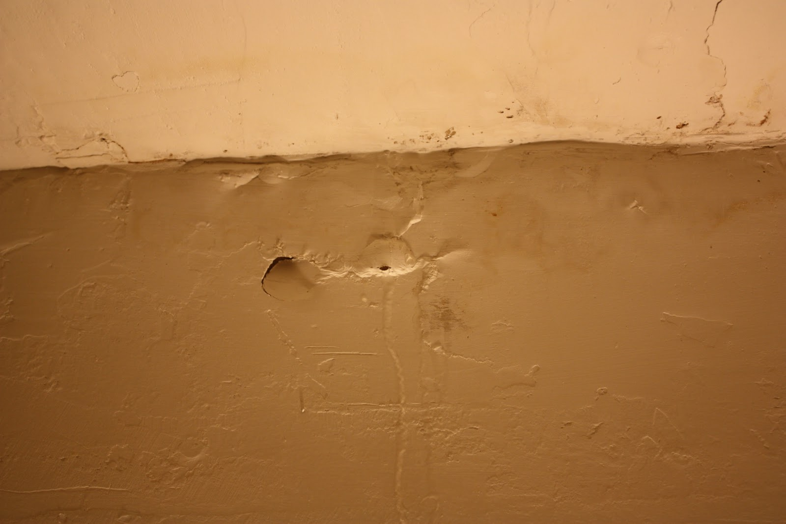 Leaking Bathroom Ceiling: The Return Of The Bathroom Ceiling Leak (thanks  For Failing Me, Pittsburgh Forward Management)