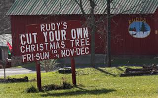 NEW Tree Farm Sign