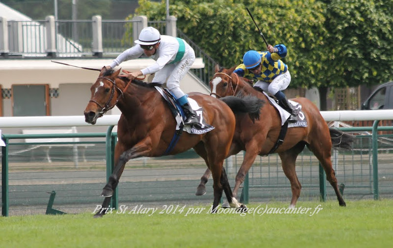 Photos Longchamp 25-05-2014 IMG_1228