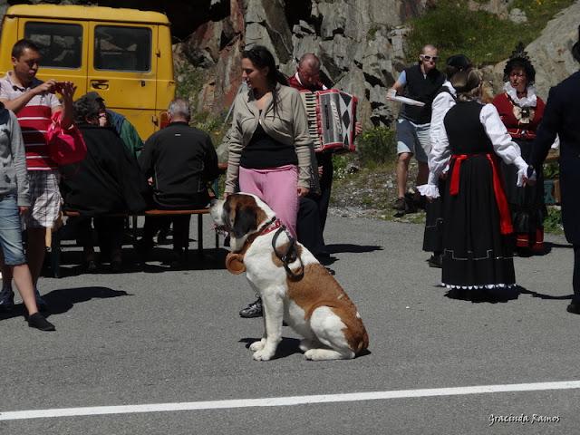 passeando - Passeando pela Suíça - 2012 - Página 9 DSC02119