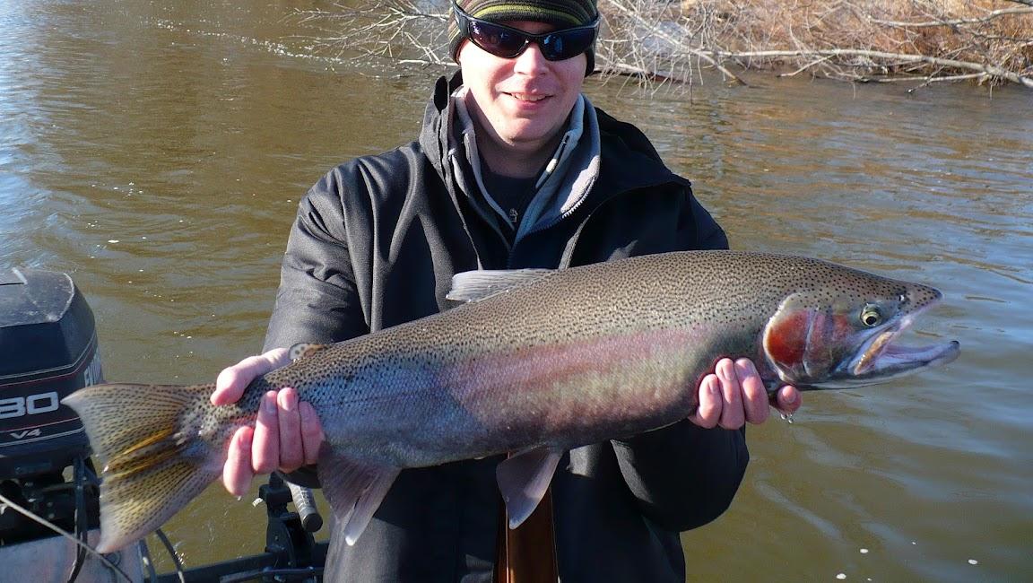 Michigan Steelhead Fishing