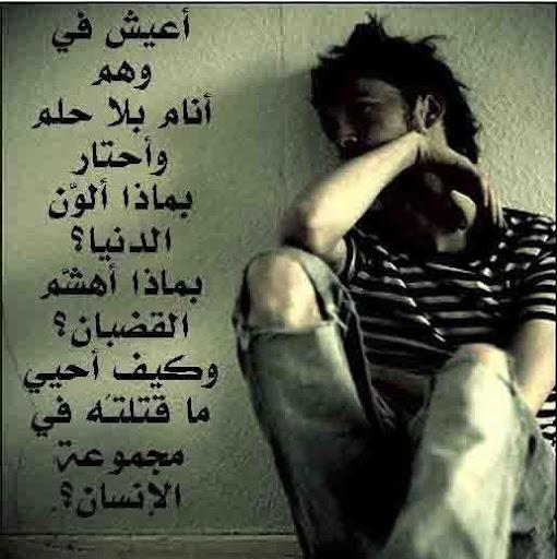 Ahmed N Photo 23