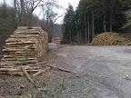 Dépôt de bois