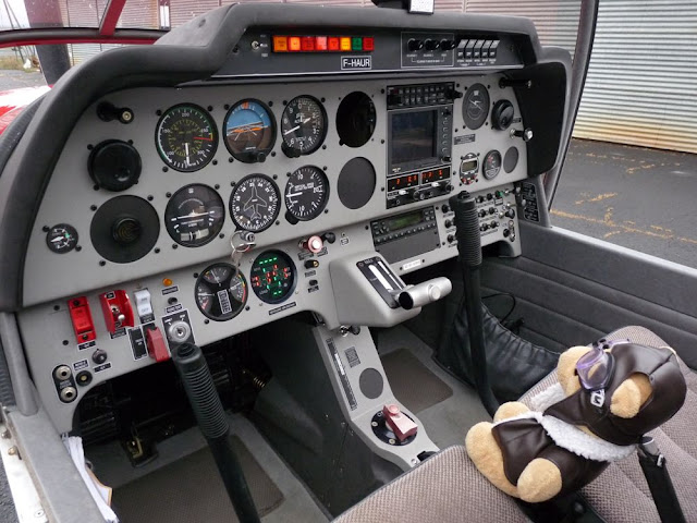 Les vols de la mascotte - Page 9 P1080834