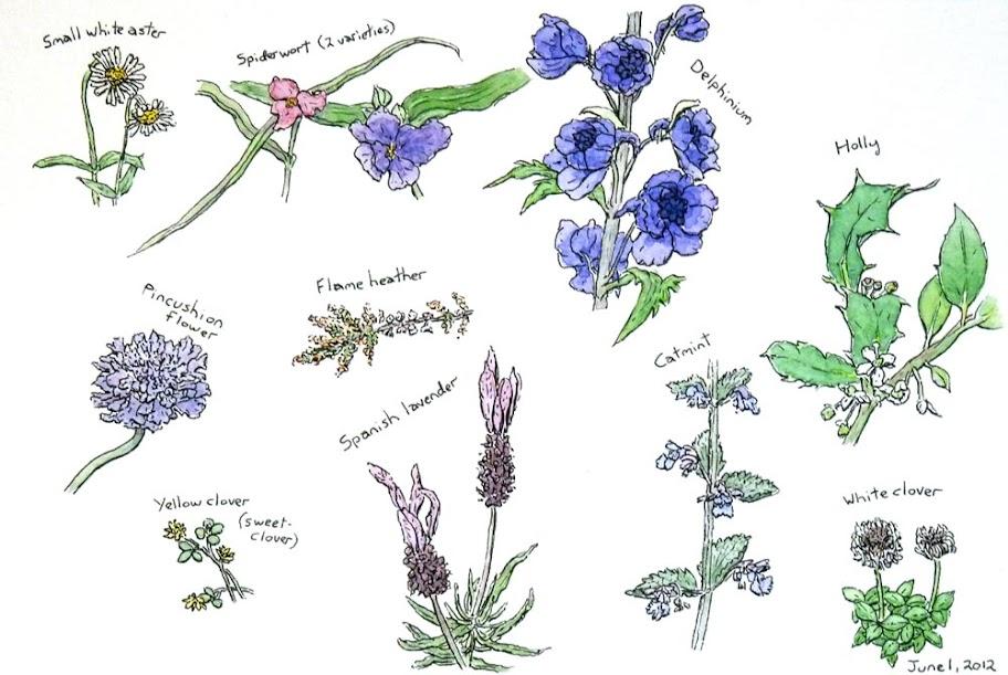 Flowers14