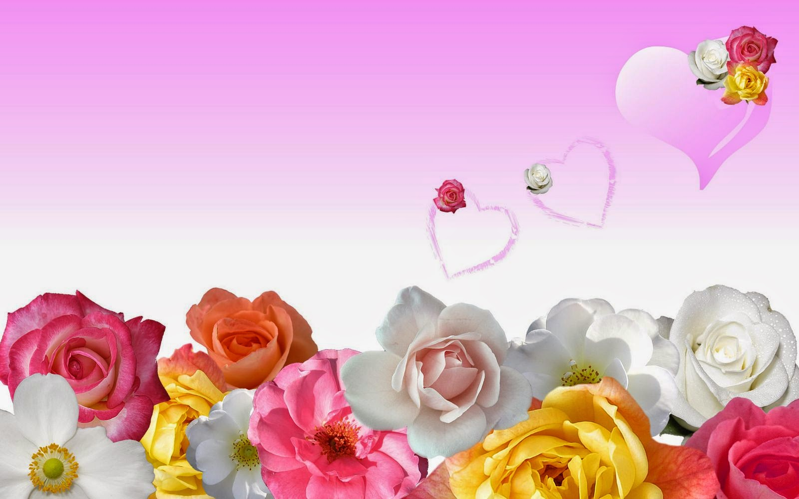 flower-power-wallpaper-rose