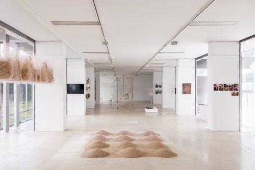 Galerias Municipais de Lisboa   Earthkeeping / Earthshaking - arte,  feminismos e ecologia : Galerias Municipais de Lisboa