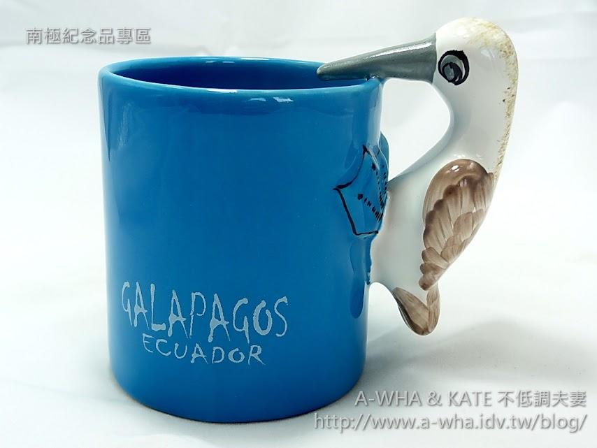 【加拉巴哥群島之旅】看看我的腳~我是大明星!藍腳鰹鳥Blue-footed Booby@Galapagos Islands