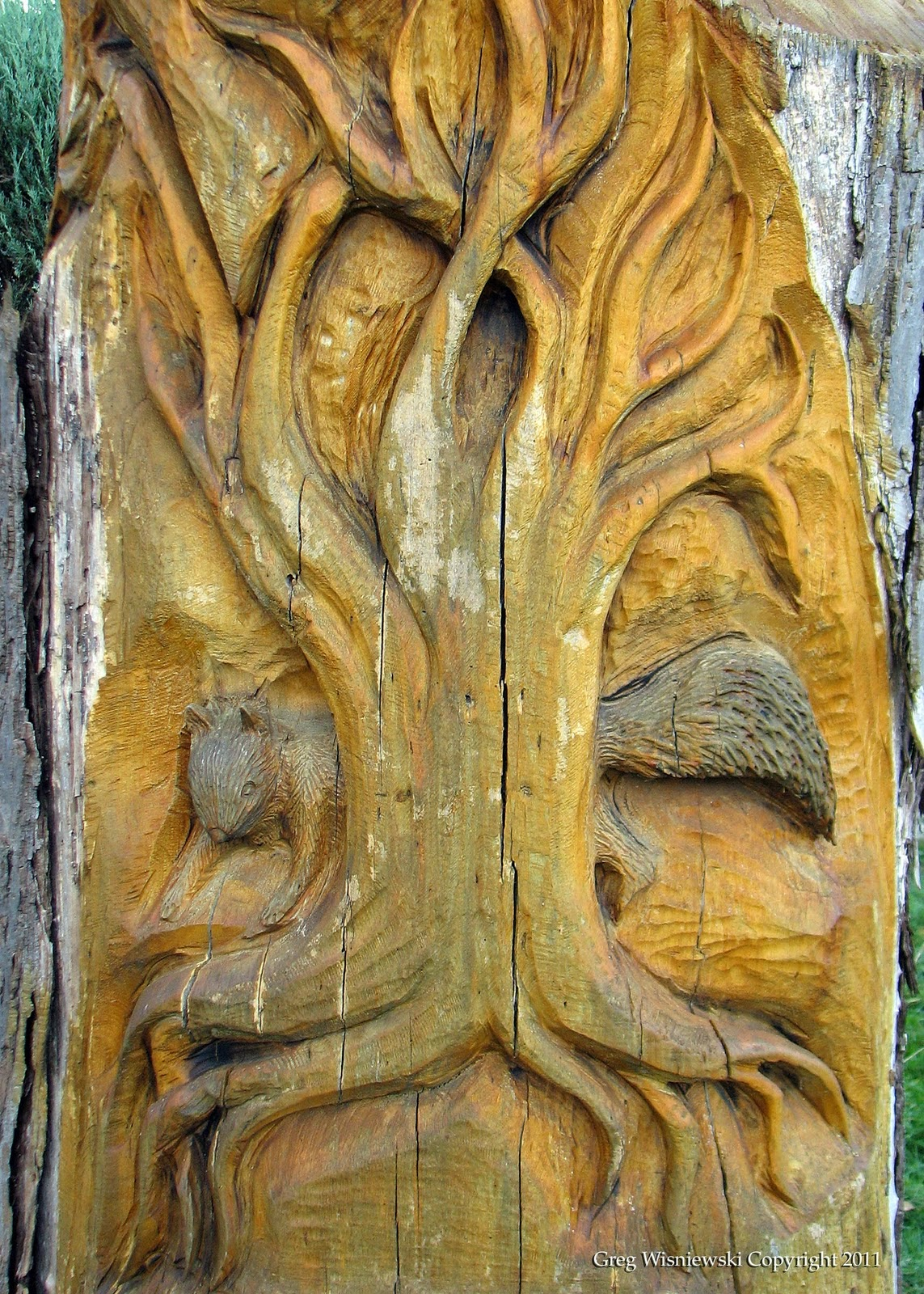 Free squirrel wood carving pattern ted woodworking projects