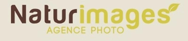 Retrouver mes photos dans l'agence :