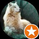 Dayton Wolf